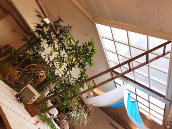 ハシゴカフェ はしご