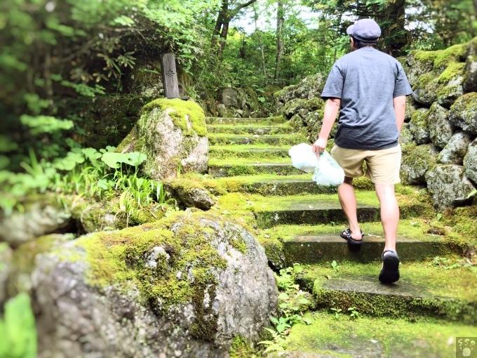 草円 苔の道